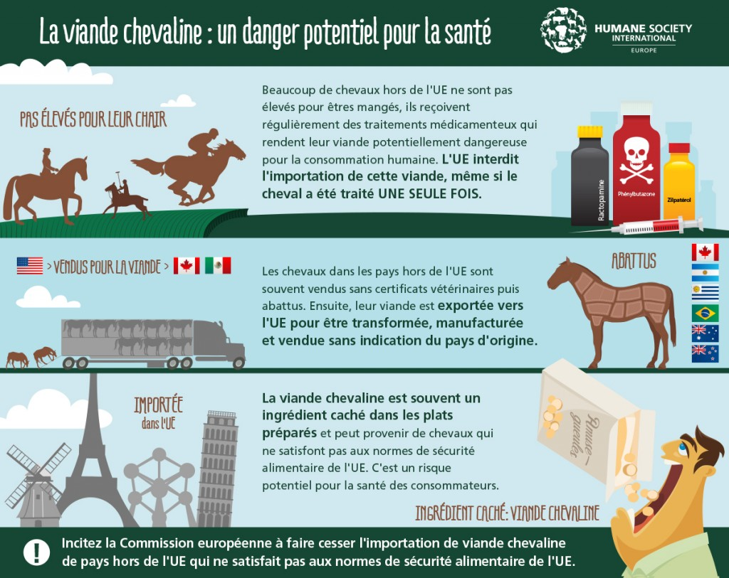 horsemeat-graphic-hsi-europe-fr